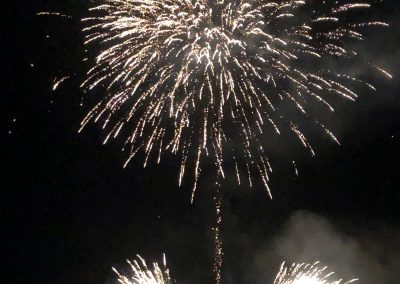 SV Bruckmühl Volksfest 2019 - Feuerwerk Blume